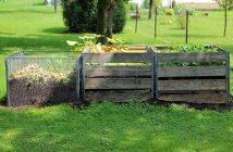 Natural ways to keep you garden thriving