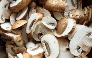 Why you should be growing your own mushrooms