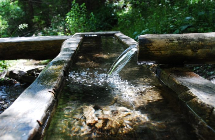 Simple ways to purify any water supply