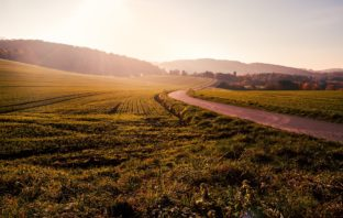 What income can your land generate